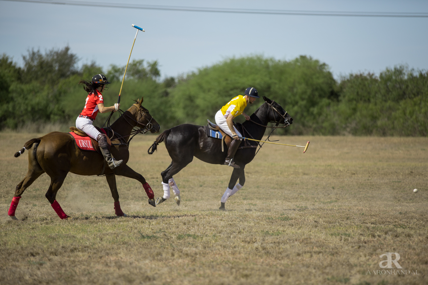 Horse Rental Match Play 1 Chukker 187 San Antonio Polo Club